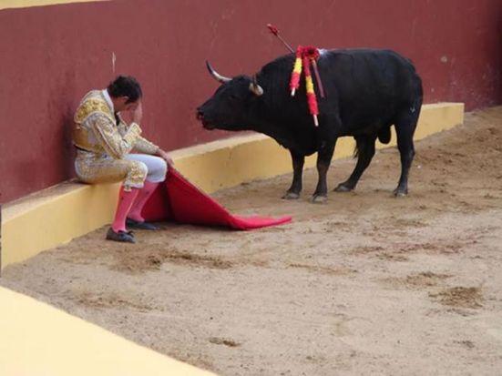 El-fake-con-la-foto-del-arrepentimiento-torero-que-se-convirtió-en-viral