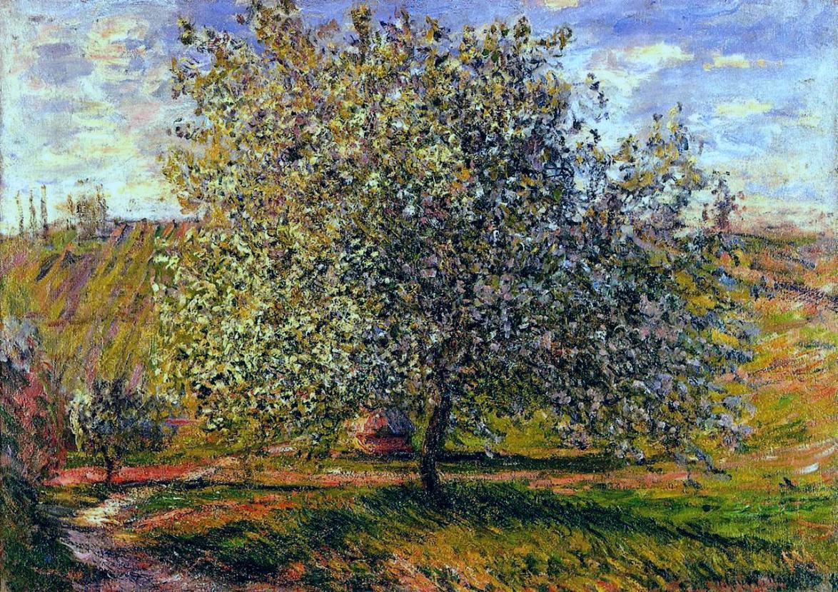 tree-in-flower-near-vetheuil.jpg